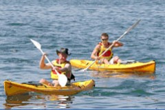 Manly Kayaks - C Tourism