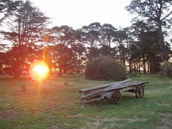 Point Cook Homestead - C Tourism