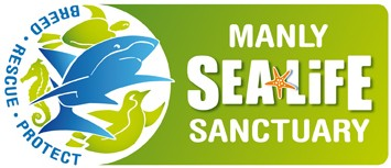 Manly SEA LIFE Sanctuary - C Tourism