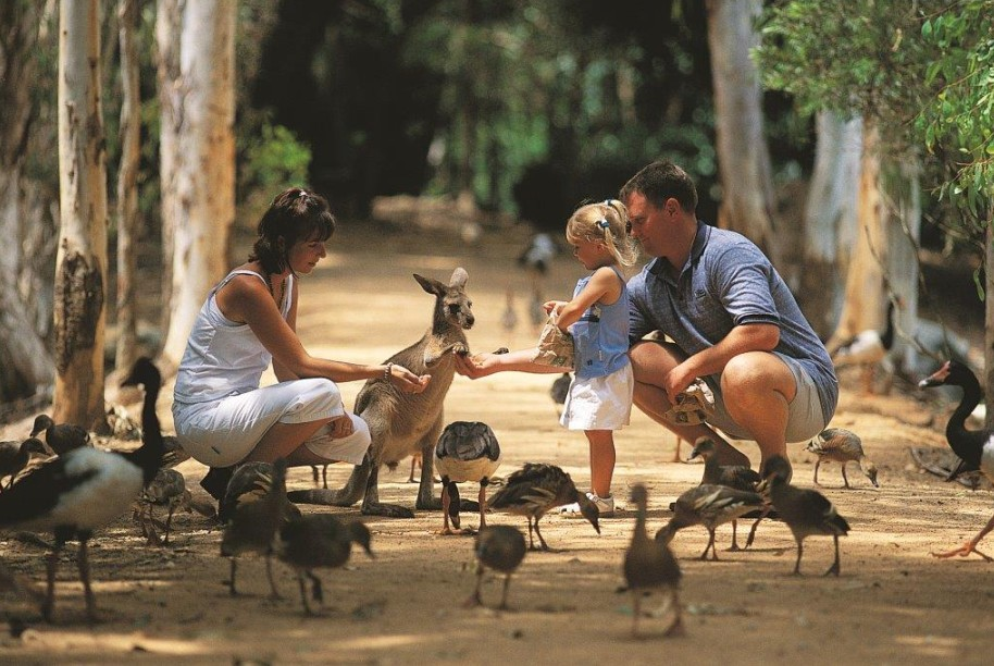 Billabong Sanctuary - C Tourism