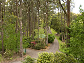Mount Lofty Botanic Garden - C Tourism