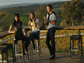 The Lane Vineyard - C Tourism