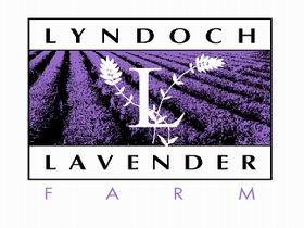 Lyndoch Lavender Farm and Cafe - C Tourism