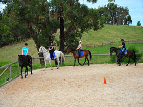 Megan Jones Riding School and Trail Rides - C Tourism