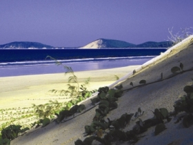 Cooloola Great Sandy National Park - C Tourism