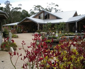 Kuranga Native Nursery and Paperbark Cafe - C Tourism