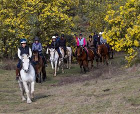 Burnelee Excursions on Horseback - C Tourism