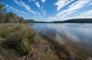 Lake Innes Nature Reserve - C Tourism
