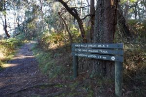 Arthurs Seat to Kings Falls Walk - C Tourism