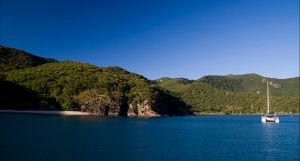 Butterfly Bay - Hook Island - C Tourism