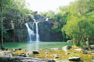 Cedar Creek Falls - C Tourism