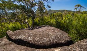 Marramarra Ridge to Smugglers Ridge walking track - C Tourism