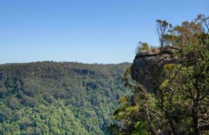 Cooks Nose Walking Track - C Tourism