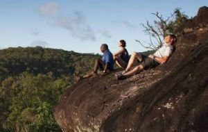Cooktown Aboriginal Art Tours - C Tourism