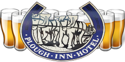 Plough Inn Hotel - C Tourism