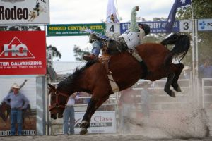 Stroud Rodeo and Campdraft - C Tourism